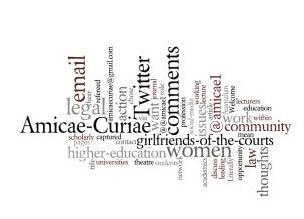 Amicae Curiae